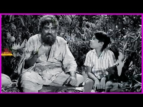 Ramu Telugu Movie Scene - Ntr , Jamuna , Pushpalatha video