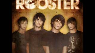 Watch Rooster Staring At The Sun video