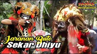 download lagu Jaranan Buto Cilik Sekar Dhiyu By Daniya Shooting Siliragung gratis