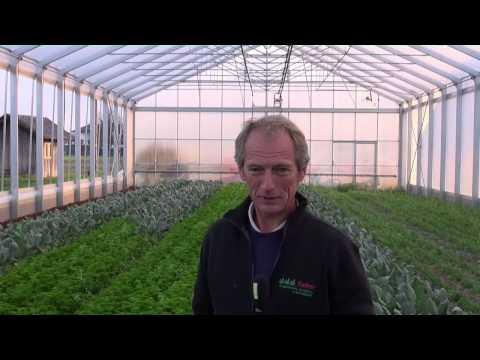 Ländle Gemüse  Walter Gehrer, MinGarta Uf Weag, 29