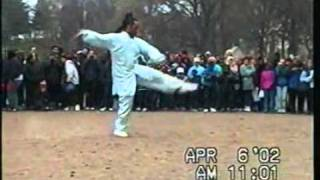 Zhao Bao Tai Chi World Tai Chi Day 2002