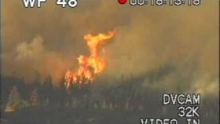 Brush Fire Forest Southern California hd 1 - Wild Fire - Forest - Best Shot Footage - Stock Footage