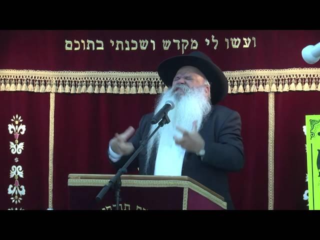 הצלש בעבודת השם | קדושת האדם | הרב דניאל זר