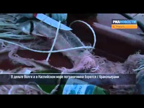 Охота на браконьеров в Каспийском море
