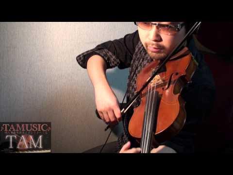 EVANGELION:Q Theme / Sakura Nagashi / Utada Hikaru / 桜流し 宇多田ヒカル / Violin:TAM(TAMUSIC)