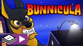 Bunnicula | Fluffy War Journal | Boomerang UK