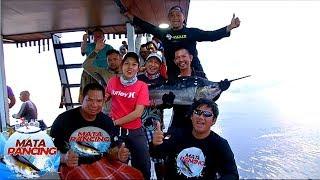 Pagi Pagi Dikejutkan Sama Ikan Marline Yg Sangat Besar  Mata Pancing 3 2