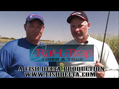Rat L Trap fishing for Stripers on the California Delta
