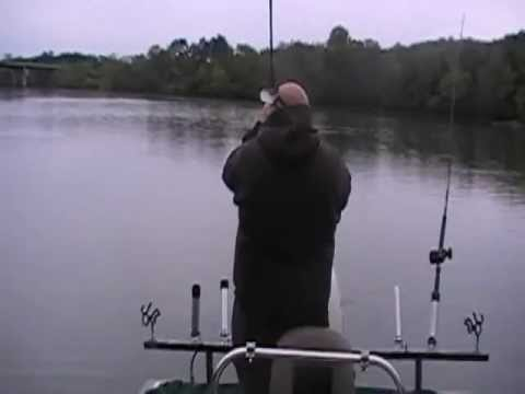 Striper fishing with Dwight Shotts in Tennessee. #3