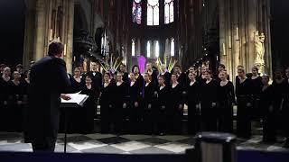 Notre Dame - Exultate - Friday, April 12, 2019