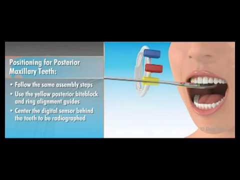 Dentsply Rinn XCP-DS FIT Dentrek Module