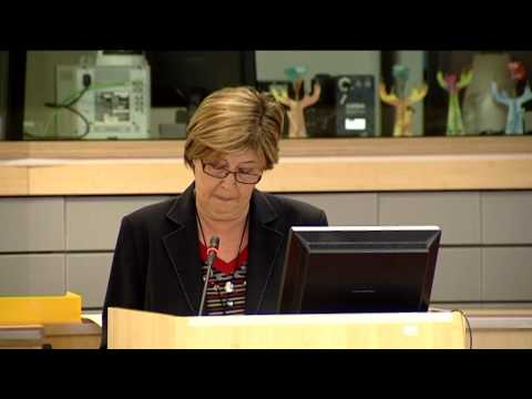 "CoR VP Bresso at the Committee of the Regions: ""Investing in EU Regions and Cities"" (13/05/13)"