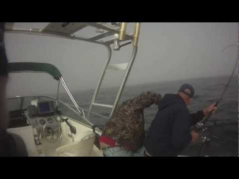 DEEP SEA KING SALMON FISHING IN NOR CAL PART 2