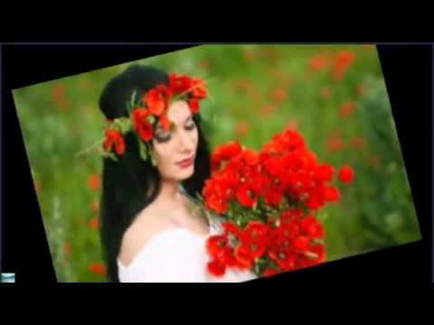 Je Pakhi Ghor Bojhena | Dhruba | Official Music Video AlaminBD