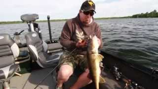 Hunting Walleyes With 360 Imaging