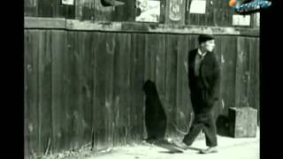 BUSTER KEATON-BAD LUCK