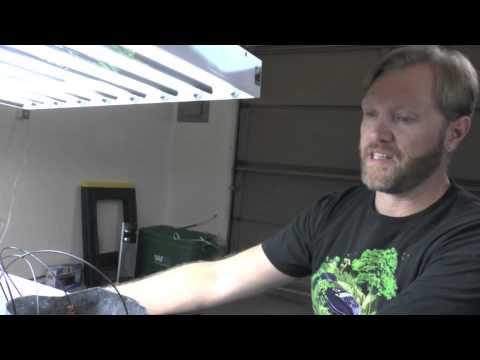 Creating an Indoor Hydroponic Vegetable Garden