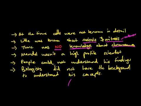 Why was Gregor Mendel Ignored? Genetics in the 1800s - DP 2.7 Blueprint of Life HSC Biology