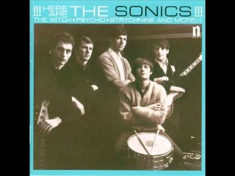 Sonics - The Village Idiot