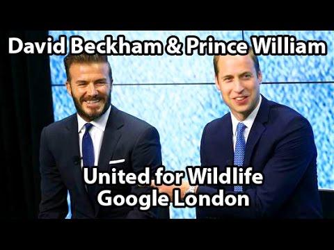 Prince William & David Beckham Visit Google London With United for Wildlife