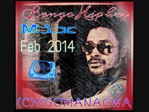 Bongo Hip hop Mix Feb 2014 (C)Ngomanagwa