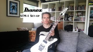 Ibanez Iceman Cleaning & Setup - STM1
