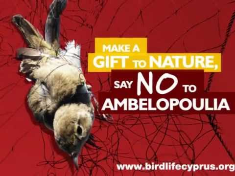 Cyprus bird trapping - BirdLife Cyprus' radio spot on the non-selective nature of trapping