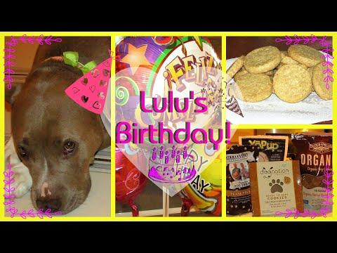 Lulu's 4th Birthday!