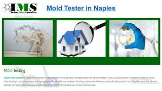 Mold Testing in Naples 1-888-851-5755