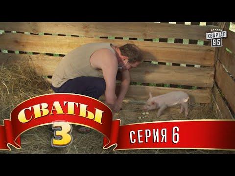 Сваты 3 (3-й сезон, 6-я серия)