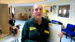 Dogs Trust Loughborough: Homefinding Questionaires