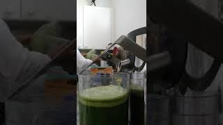 How to make celery juice in a juicer