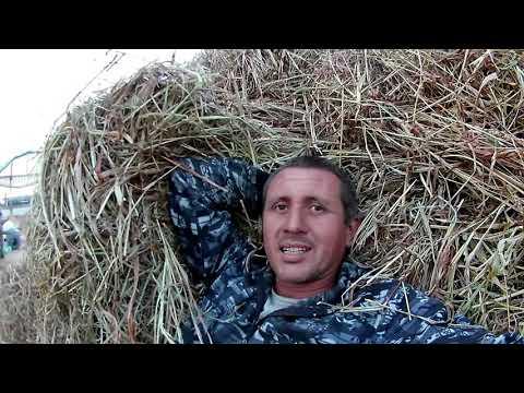 2 дня из жизни колхозника))