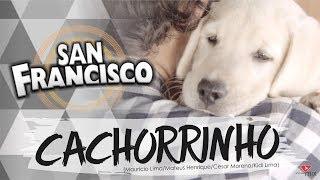 San Francisco - Cachorrinho (Lyric Video)