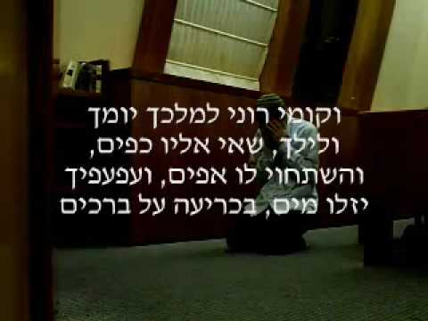   - Jewish Prayer: THE SOURCES