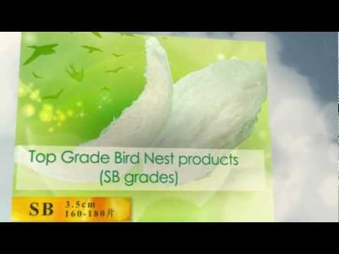 [NPQ] Bird Nest Supplier, Malaysia - Nest World