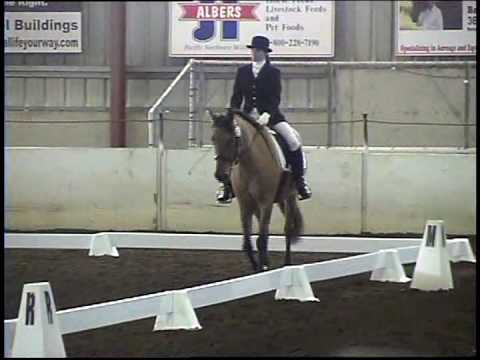 Bella Rose - Kiger Mustang 1st Level Dressage Video
