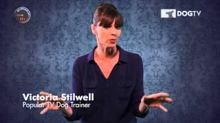 DOGTV - Victoria Stilwell 354 seconds on Barking