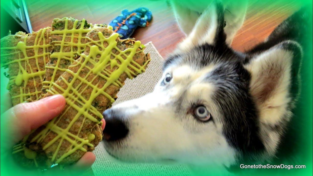 Snow Dogs Dog Treats Site Youtube Com
