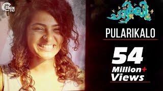 Charlie  Pularikalo Song Video  Dulquer Salmaan Pa