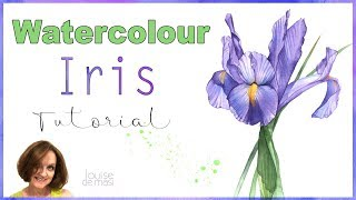How to paint an Iris in Watercolor // Watercolour Iris Painting Demonstration // Louise De Masi
