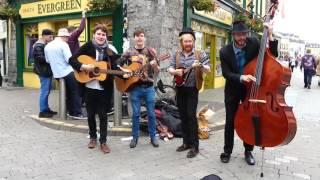 The Cozy Cartel - Galway Ireland