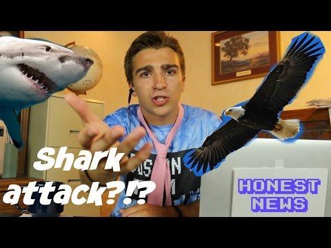 SHARK ATTACK -- Honest News -- Boston Tom