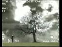 """""""Guardastelle"""" - Bungaro - Videoclip Originale"""