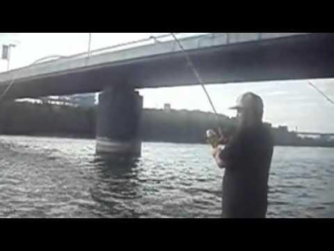 Sturgeon Fishing / Pêche a l'esturgeon Montreal