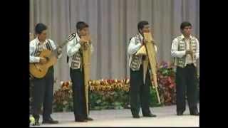 Cooking | Arpegios Bolivia En jesucristo Martir de paz | Arpegios Bolivia En jesucristo Martir de paz