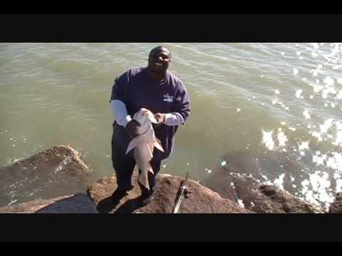 Randy seawolf park youtube for Galveston fishing report seawolf park