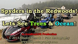 Spyders in the Redwoods! - Lets See Trees & Ocean! (Day-2) | RT-SPE | RoadTrips