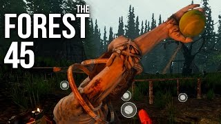 THE FOREST [HD+] #045 - Zurück am Baum des Todes ★ Let's Play The Forest