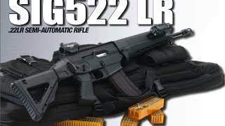 Gun Disassembly 2: SIG 552 DEMO DISASSEMBLY
